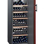 Liebherr WK 201 – refroidisseurs à vin (Autonome, Acier inoxydable, SN-T, A++, Rouge, Noir)