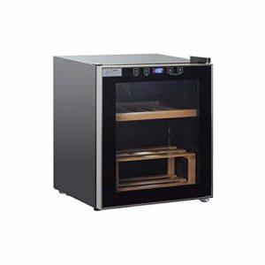 JJSFJH Cave à vin Réfrigérateur – Compresseur Bouteille de vin Chiller – Silencieux avec Faible Vibrations – ou autoportant intégré