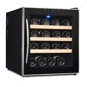 TX Cave à vin 16 Bouteilles – Refroidisseur et Chauffe-vin numérique de 48 litres 10ºC à 18ºC, Écran Tactile Intelligent | Lumière Froide LED | Verre trempé Double