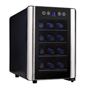 Wine Cooler TX Cave à vin de 12 Bouteilles – Refroidisseur à vin numérique et réchauffeur 8ºC à 18ºC, écran Tactile et lumière Froide LED
