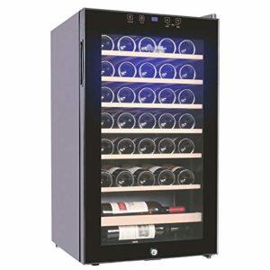 JJSFJH Cave à vin/Chiller, vin de comptoir Rouge et Blanc Cave à vin, Réfrigérateur autoportant, Fonctionnement Silencieux Réfrigérateur